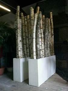 Branche De Bouleau : decoration exterieur bouleau ~ Melissatoandfro.com Idées de Décoration