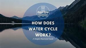 How Does The Water Cycle Work   A Helpful Illustrated