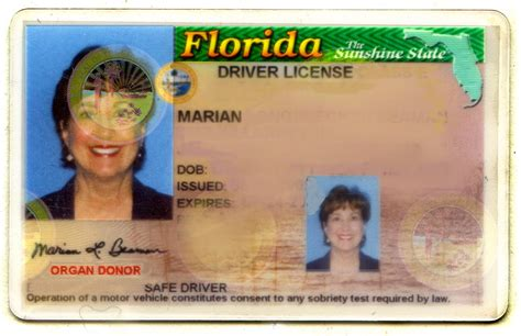 Florida Drivers License Template by Florida Driver S License Plain And Fancy