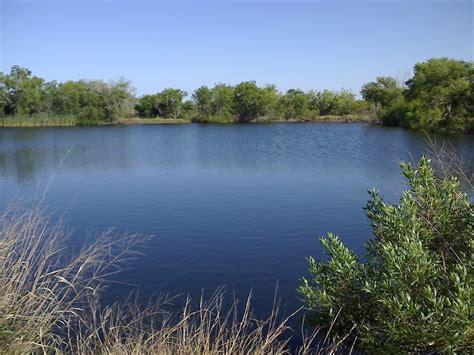 ponds pictures pollywog pond bird wildlife sanctuary corpus christi best areas texas tx city data forum