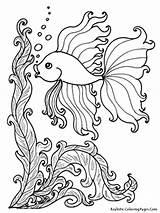 Coloring Sea Pages Animal Ocean Getdrawings sketch template