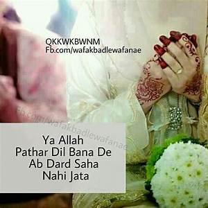 230 best Islami... Islamicwith Hindi Quotes