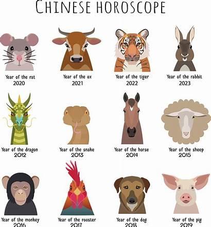Chinese Astrology Pig Zodiac Animals Horoscopes Animal
