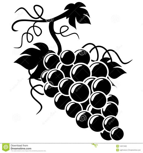 Silhouette Grapes Illustration Stock Photography Image
