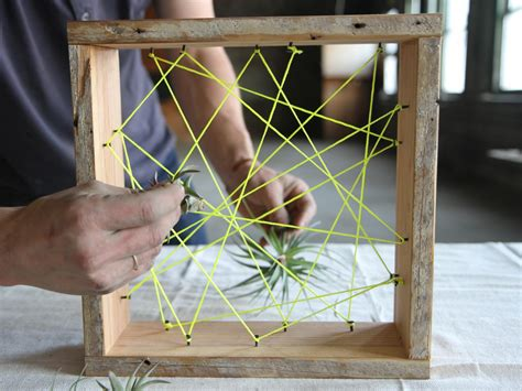 air plant container danmade