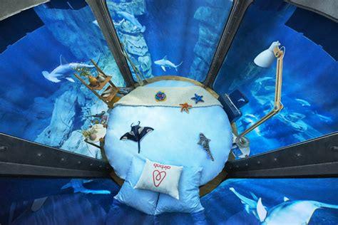 nuit dans un aquarium airbnb vous propose une nuit insolite dans l aquarium de