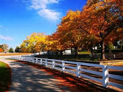 Autumn Farm Horse Kentucky Fall Wallpapers Desktop