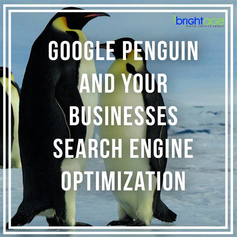 business search engine optimisation penguin and your businesses search engine optimization