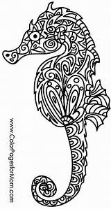 Coloring Seahorse Adult Animal Mandala Printable Sea Colorpage Horse Colouring Adults Animals Ausmalbilder Zentangle Under Malvorlagen Adultcoloringpage Colorpagesformom Schablonen Buch sketch template