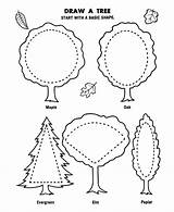 Arbor Coloring Pages Tree Draw Canopy Trees Flowers Plant Printable Sheet Planting Honkingdonkey Activities Drawing Sheets Preschool Age Crafts Holiday sketch template