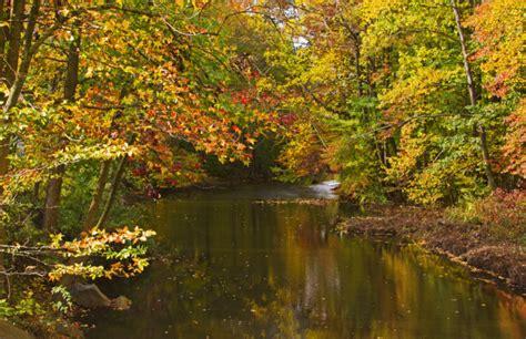 beautiful places   fall foliage   jersey