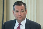 Ted Cruz Thinks Democrats Want to Bring Tofu and Dyed Hair ...
