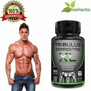 Tribulus Extract 96  Saponins Strongest Legal Testosterone Muscle Booster Pills