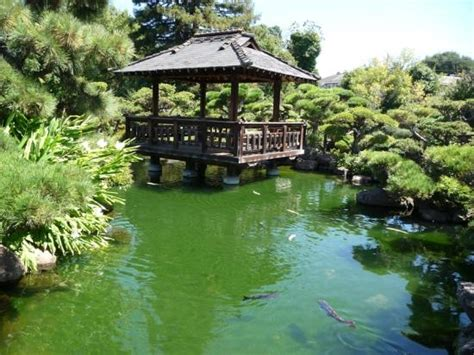 hayward japanese gardens picture of hayward japanese