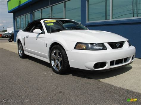 white ford mustang for oxford white 2004 ford mustang cobra convertible exterior