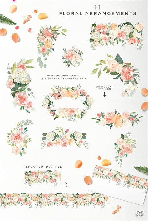 ad peaches  cream flower graphic set  twigs  twine  atcreativemarket peaches