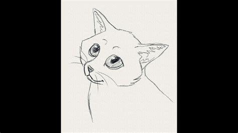 draw  cat cartoony cute kitten drawing lesson