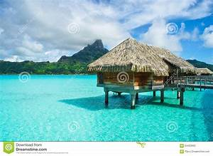 thatched roof honeymoon bungalow on bora bora stock photo With cost of honeymoon in bora bora