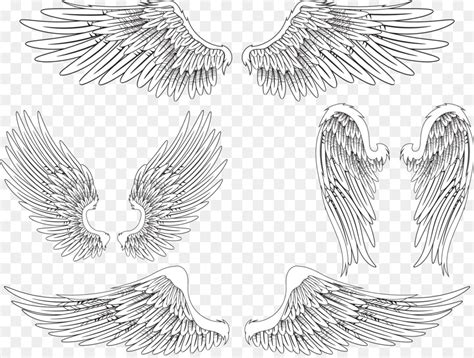 angel wing bird feather creative wings