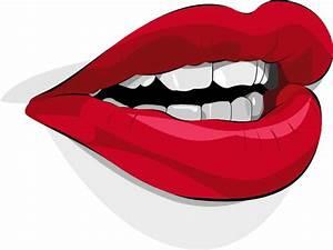 Mouth Clip Art at Clker.com - vector clip art online ...