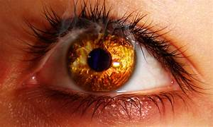 7 Signs You Need to Visit Ophthalmologist Right Now