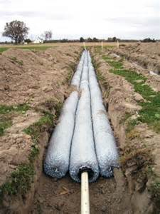 Septic Tank Leach Field Pipe