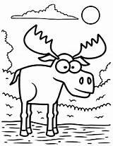 Moose Coloring Pages Eyed Cartoon Drawing Standing Face Water Christmas Zion Printable Animal Williams Antler Getdrawings Getcolorings sketch template
