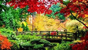 Japan Natural Landscape Beautiful Places Wallpapers