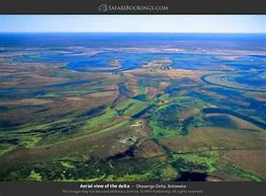 Okavango Delta ... Delta