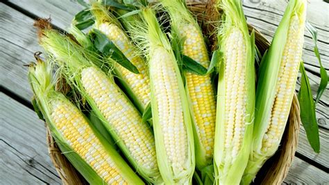 cuisiner des epis de mais comment griller du maïs
