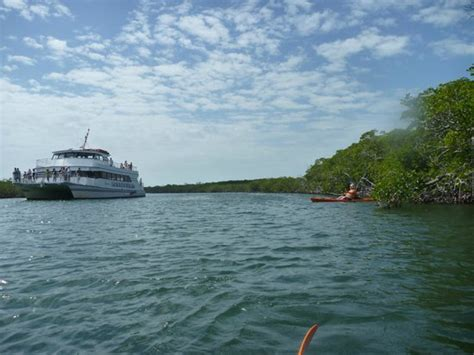 Catamaran Boatyard Key Largo Fl 33037 by Water Trail Picture Of Pennek Coral Reef State