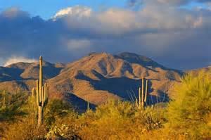Tucson Arizona Desert Scene