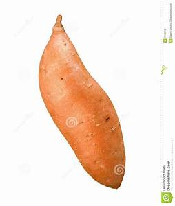 Sweet Potato Royalty Free Stock Image - Image: 7740376