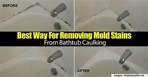 Best way for removing mold stains from bathtub caulking for Best way to remove mold from shower caulk