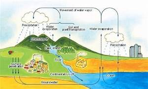 Diagram Of Earth U2019s Water Cycle  Adapted From Japan
