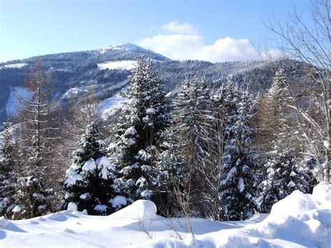 winter hintergrundbilder kostenlos