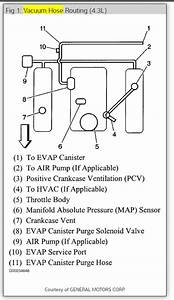 2001 Chevy S10 43 Vacuum Line Diagram