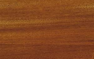 Mahagoni Farbe Holz : mahagoni holz eigenschaften w rmed mmung der w nde malerei ~ Orissabook.com Haus und Dekorationen