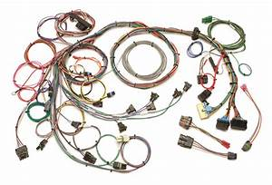 Painless Wiring 60203 Gm Tpi Fuel Injection Harness Fits