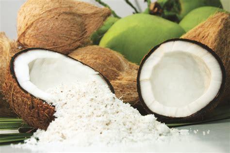 image gallery kelapa