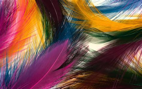 colorful backgrounds colorful wallpapers best wallpapers