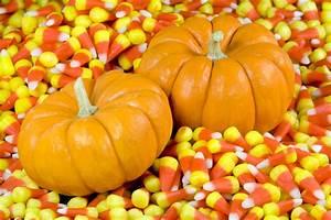 Fall Pumpkin Wallpaper for Desktop - WallpaperSafari