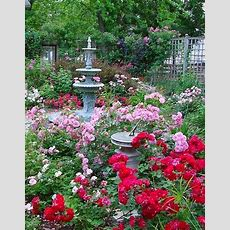1000+ Images About Pink Gardens On Pinterest Garden