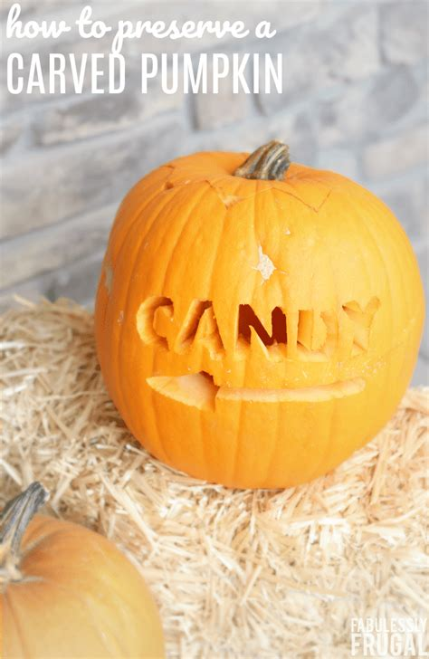 How To Preserve A Carved Pumpkin From Rotting With 3