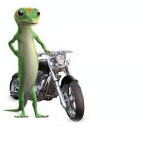 Geico Motorcycle Commercial  Car Insurance Cover