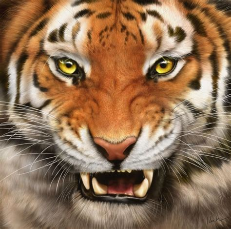 Tiger Wallpapers Download