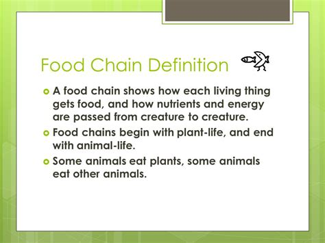 cuisines meaning food chain ms goodenow ppt