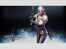 Witcher 3 Wild Hunt Ciri Costume Costumebiznet