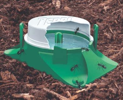 eliminare le formiche dal giardino come eliminare le formiche rosse minerva2015 it