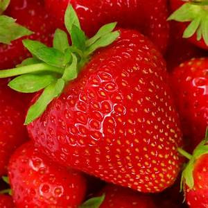 3 STRAWBERRY 'CAMBRIDGE FAVOURITE' FRAGARIA PERENNIAL ...